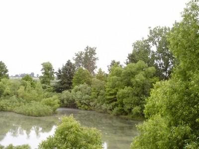 h marshland.jpg